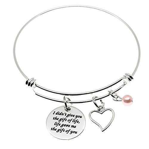 Ms. Clover Step Daughter Gifts from Stepmom, I Didn't Give You The Gift of Life Life Gave Me The Gift of You Step Daughter Necklace, Adoption Gifts.