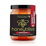 Honeybliss – Cinnamon Flavored Raw Clover Honey with 500mg Hemp Extract - 9oz Glass Jar   100% Pure, Unfiltered Raw Honey Infused with Organic Hemp Oil Extract   Stress, Anxiety, Pain Relief, Sleep