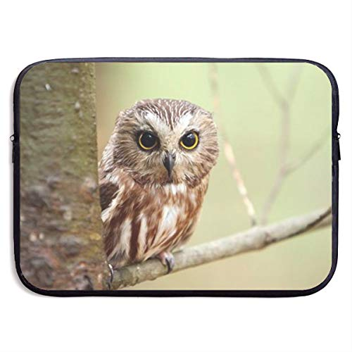 Gao808yuniqi Owl Birds On Branch Laptop Sleeve Shoulder Bag for Women, Protective Carrying Case Compatible with 13-15 Inch MacBook Pro, Air, Notebook,Slim Sleeve