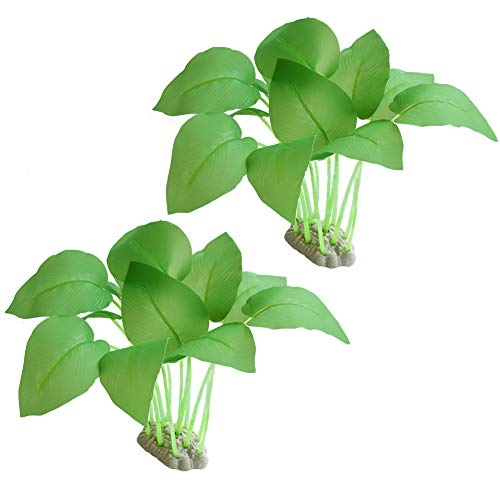 What Is The Best Substrate For Aquarium Plants