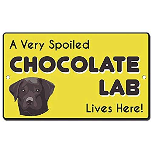 HNNT Metalen bord 8x12 inch Zeer verwend Chocolade Lab Hond