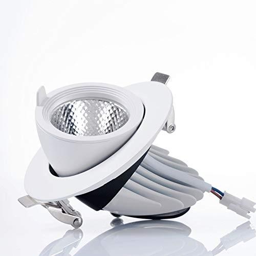 Mumnk Kommerzielle Anti-Glare-Einbauflach Spotlight COB LED Drehbare Anti-Glare-Embedded Down Clothing Store Aisle Vitrinenbeleuchtung Panel-Lampen-Ra (Color : Neutrales Licht-20W)
