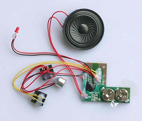 2x 10S 10 Sec Musik Sound Modul Decoder Aufnahme Soundmodul mit Lautsprecher