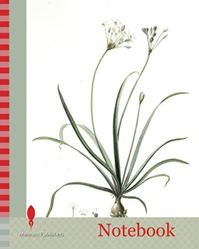Notebook: Allium fragrans, Ail parfumé, Fragrant onion, Redouté, Pierre Joseph, 1759-1840, les liliacees, 1802 - 1816