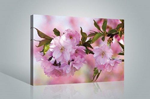 1art1 Blumen - Kirschblüten Bilder Leinwand-Bild Auf Keilrahmen | XXL-Wandbild Poster Kunstdruck Als Leinwandbild 120 x 80 cm