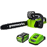 Best Chainsaw Reviews in 2020