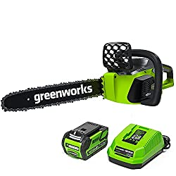 GreenWorks 20312 G-MAX the best battery powered homeowner chainsaw