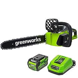 Image of Greenworks 16-Inch 40V...: Bestviewsreviews