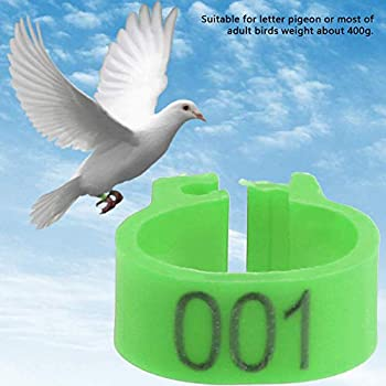 Anneau D'oiseau 100Pcs 8MM, Bandes de Jambe de Volaille à Clip Numérotées pour Canard de Poussins de Perroquet de Pigeon(vert)