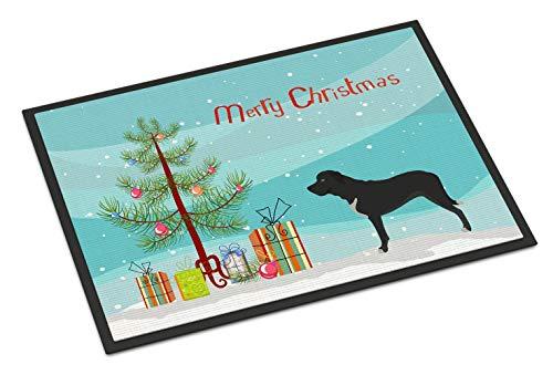 TeRIydF Broholmer Danish Mastiff Christmas Doormat Multicolor 16x24(in)