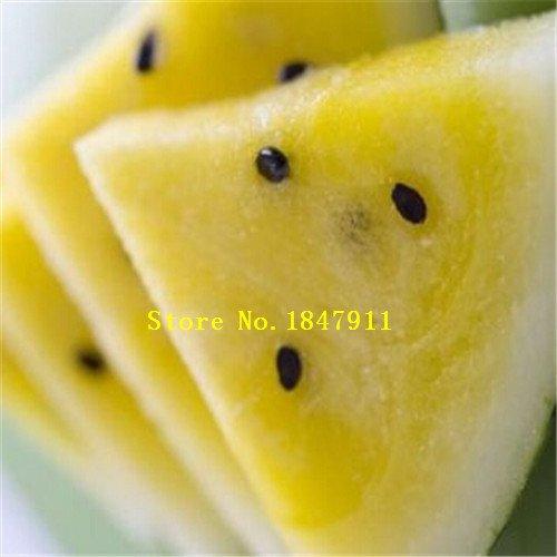 Vert: Big Sale emballage d'origine 30 graines/Paquet, fruits Graines de melon d'eau Pot, Beauté noire pastèque, des semences de pastèque