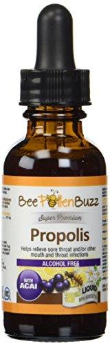 Bee Buzz Propolis Tincture Alcohol Free 30 ml Acai Flavor