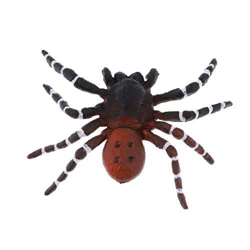PULABO Realistische Wissenschaft Kunststoff Tiermodell Figur Brasilianische Rote Spinne Figur Kinder Kinder Pädagogisches Spielzeug Dekoration Collectibles Kinder Geschichtenerzählen Requisiten Kreat