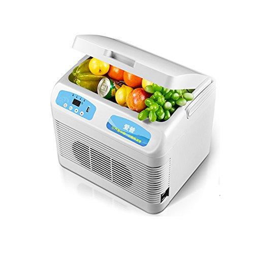YONG FEI 12L Refrigerador del coche Caja frigorífica portátil Mini Refrigerador Camión Incubadora Pequeño Hogar Frigorífico Refrigeración Mini nevera (Tamaño : 12V/24V/220V)