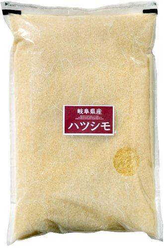 岐阜県 3分つき 匠の米ハツシモ 1kg 令和元年産