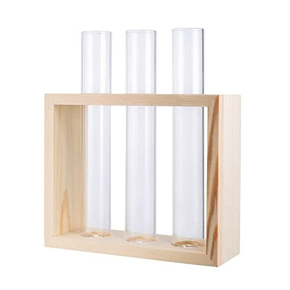 Mkono Wall Hanging Glass Planter Propagation Station Modern Flower Bud Vase in Wood Stand Rack Tabletop Terrarium for… 6 Great propagators: Prefect for propagations and cuttings! Propagates your plant's babies in style, slim glass container provides plenty of room for plant's roots and all are visible for observing its growth condition. Minimalistic Look: A wood rack in Natural Retro Color combined with 3 clear glass tubes. A beautiful way to display the artificial or freshly cut flowers, mixed bouquets and water rooted plants for home decor in livingroom, bedroom, restroom, dinning room, kitchen, or office. Functional Item: Simple look is suitable for most of plants, likes Scindapsus, Pothos vine, African violets, Lucky Bamboo, even for Herbs. Wall mountable or desktop stand for different ways of showing. Make a great gift for the plant-lover in your life.