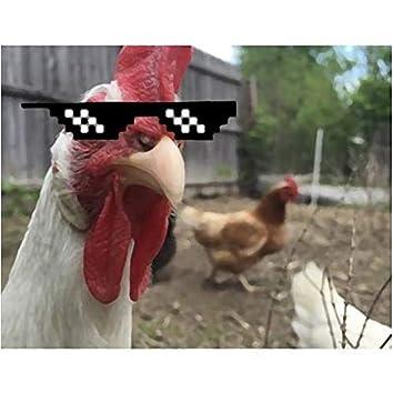 La gang del pollo