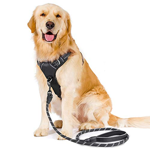 rabbitgoo No-Pull Dog Harness Leash Set Heavy Duty Halter Harness with Leash for Large Dogs 3M Reflective Adjustable Pet Vest Harness Outdoor Training Leash, Large, Black