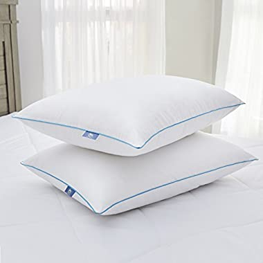 Serta Perfect Sleeper Fresh & Cool Pillow 2 Pack (King)