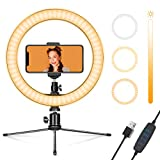 Ring Light 10' with Stand & Phone Holder for YouTube Video, Dimmable Desk LED Ring Light with Cell Phone Holder for Photography, Shooting, Tiktok, Selfie (2020 New Version)