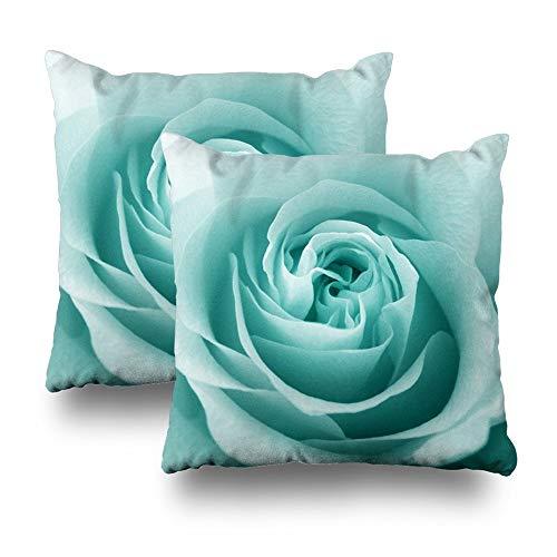 Suesoso - Copricuscino decorativo in morbido cotone stampato, 45,7 x 45,7 cm, con motivo a rose blu Tiffany, per divano, letto, auto, soggiorno, casa, con cerniera nascosta (set di 2)