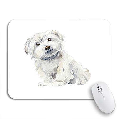 """Adowyee Gaming Mouse Pad Puppy Maltese Dog Portrait Small Watercolor Cute Animal Purebred 9.5""""x7.9"""" Nonslip Rubber Backing Mousepad for Notebooks Computers Mouse Mats"""