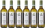 Volunte Pinot Grigio 2019 White Wine
