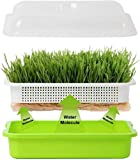 Homend Seed Sprouter Tray with Lid, Seed Germination Tray BPA Free Nursery Tray for Seedling Planting Great for Garden Home Office (2)