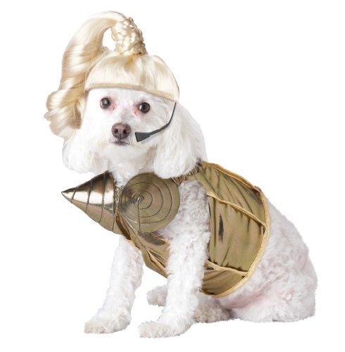 Pup-A-Razzi Pop Queen Costume pour Chien, Doré