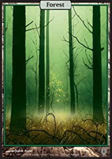 Magic: the Gathering - Forest - Unhinged - Foil