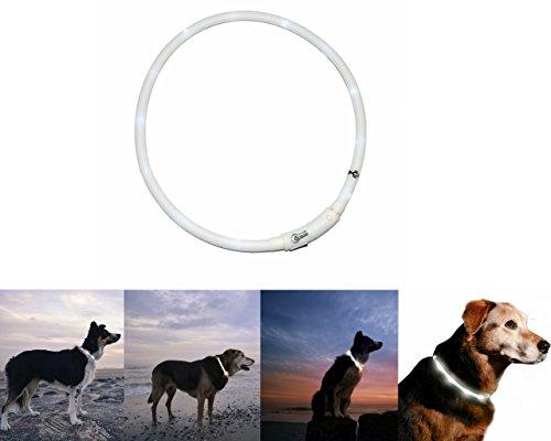 Orchidtent Led-hondenhalsband met USB-aansluiting, oplaadbaar, waterdicht, in lengte verstelbaar, Wit.