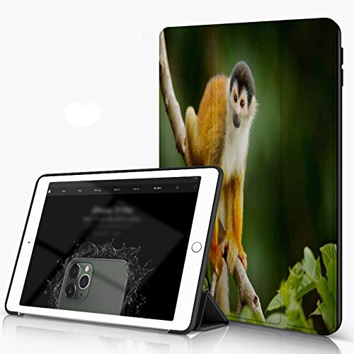 Case for iPad 10.2 Inch, iPad 7./8. Generation shell Majestic Waterfall Blocked with Massive Rocks with Moss on Them, Slim Lightweight Stand Protective Case for iPadr,Auto Wake/Sleep