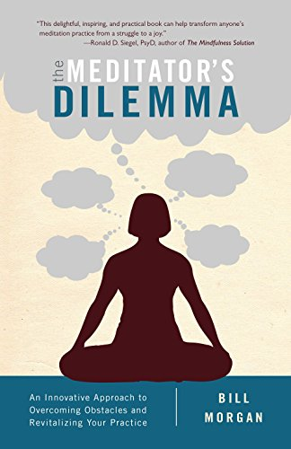 The Meditators Dilemma: An Innovative Approach to Overcoming Obstacles and Revitalizing Your Practice