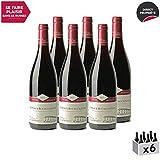 Côteaux Bourguignons Rouge 2017 - Domaine Eric Montchovet - Vin AOC Rouge de Bourgogne - Cépages Pinot Noir, Gamay - Lot de 6x75cl