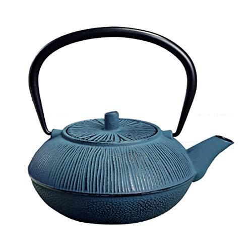Teapot Small Cast Iron Tea Kettle, Easy Pour Vintage Japanese Handmade Tea Maker for Party Office Home, 1000ml