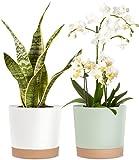 Kubvici Flower Planter Pot