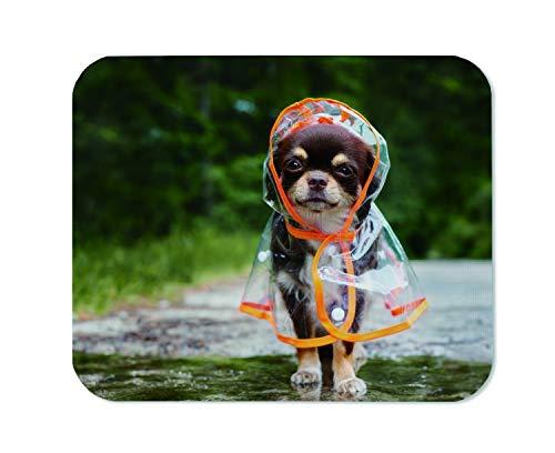 Yeuss Rainy Dogs Mauspad, rechteckig, rutschfest, lustige Chihuahua-Hunde, im Regenmantel im Freien von A Puddle Gaming Mauspad, Braun/Gelb/Grün, 200 mm x 240 mm