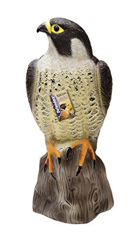 Defenders Falke (Für Tauben und Vögel, Vogel-Abwehr, 35.5cm groß)