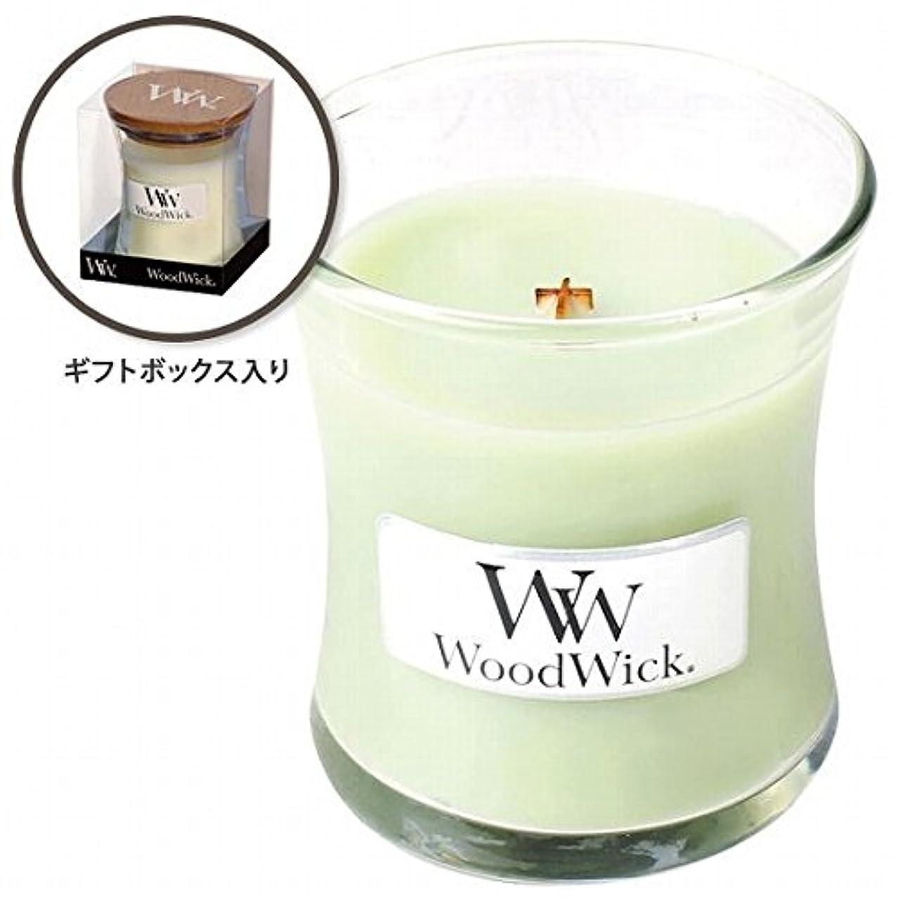 戻る初期天窓ウッドウィック( WoodWick ) Wood WickジャーS 「ライムジェラート」