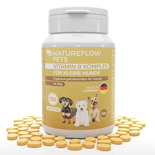 Complejo de Vitamina B Perros - B Vitaminas para perros a partir de 2 kg - 120 Comprimidos de vitaminas - Suplemento perro con K3, ácido fólico, calcio y biotina para perros - Made in Germany
