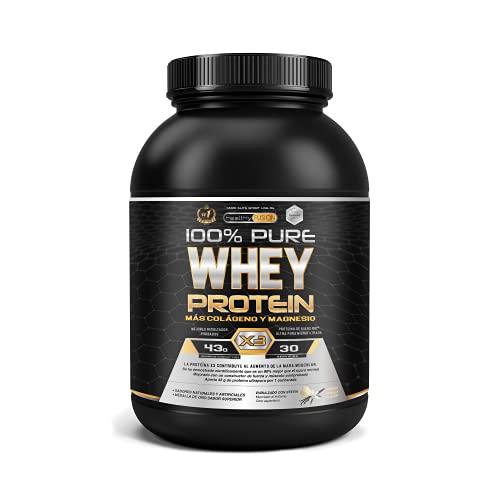 Whey protein 100% pura | Proteine whey + collagene + magnesio | Proteine del siero di latte isolate per lo sviluppo muscolare | Massa muscolare pulita | 30 dosi (Vaniglia)