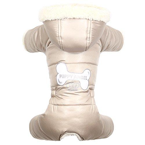 Puppy Angel Lovely Bone Ensemble pour Chien Femelle Beige Taille L