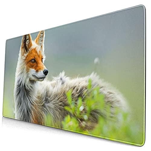 Alfombrilla de ratón Grande para Juegos,Nature Fox Wildlife Theme Fox Cute Fox,con impresión Base de Goma Natural Antideslizante para PC Laptop XXL
