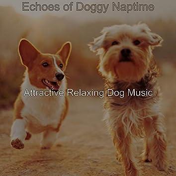 Echoes of Doggy Naptime