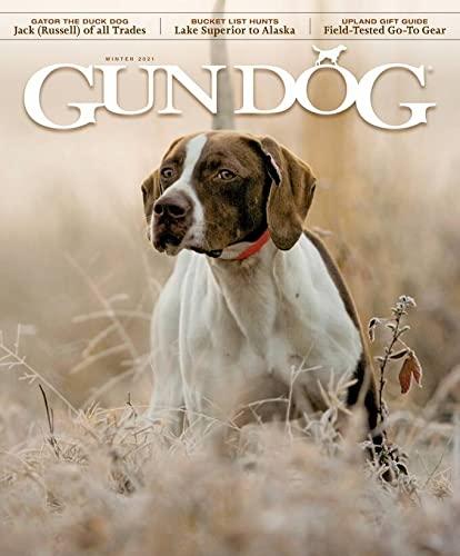 top 10 dog magazines dogster bark whole dog journal modern dog and more. Black Bedroom Furniture Sets. Home Design Ideas