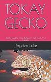 TOKAY GECKO: Tokay Geckos Care, Behavior, Diet, Cost And Health.