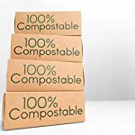 Alyn Bamboo Cotton Buds | Pack of 2 (400 Pieces) | Organic GOTS Certified Wool | 100% Biodegradable Wooden Ear Swabs…