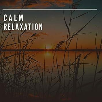 # 1 Album: Calm Relaxation