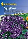 Sperli Blumensamen Vanilleblume Vanillezauber, grün