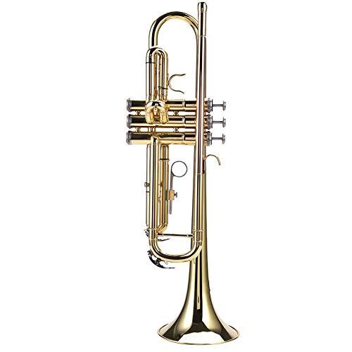 Tromba Bb dorata, Student Tromba in ottone di colore oro Strumento a Fiato con custodia, bocchino, guanti bianchi (dorato)